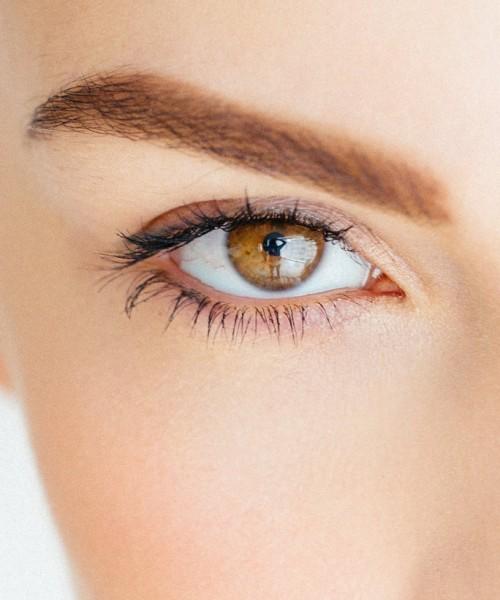 La Ceja: Importante Elemento de la Expresión Facial